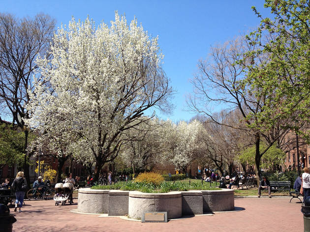Cobble Hill Park