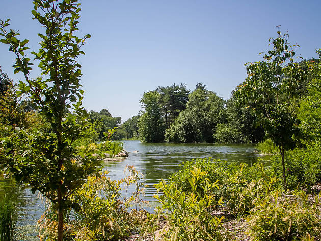 lakeside012.jpg