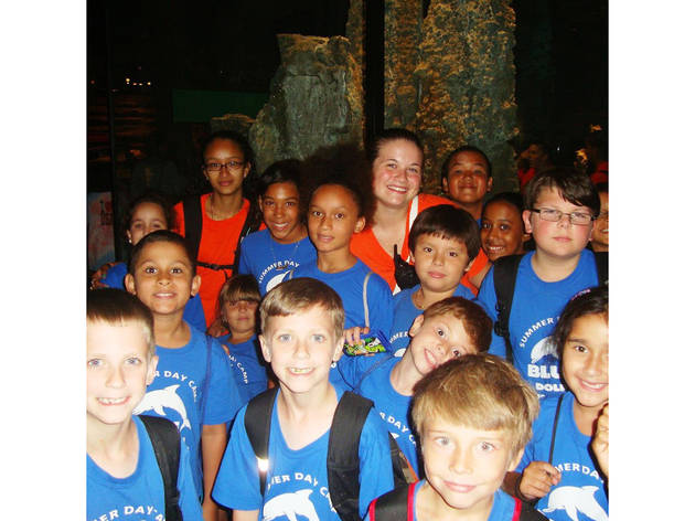 Blue Dolphin Summer Camp: Transformers