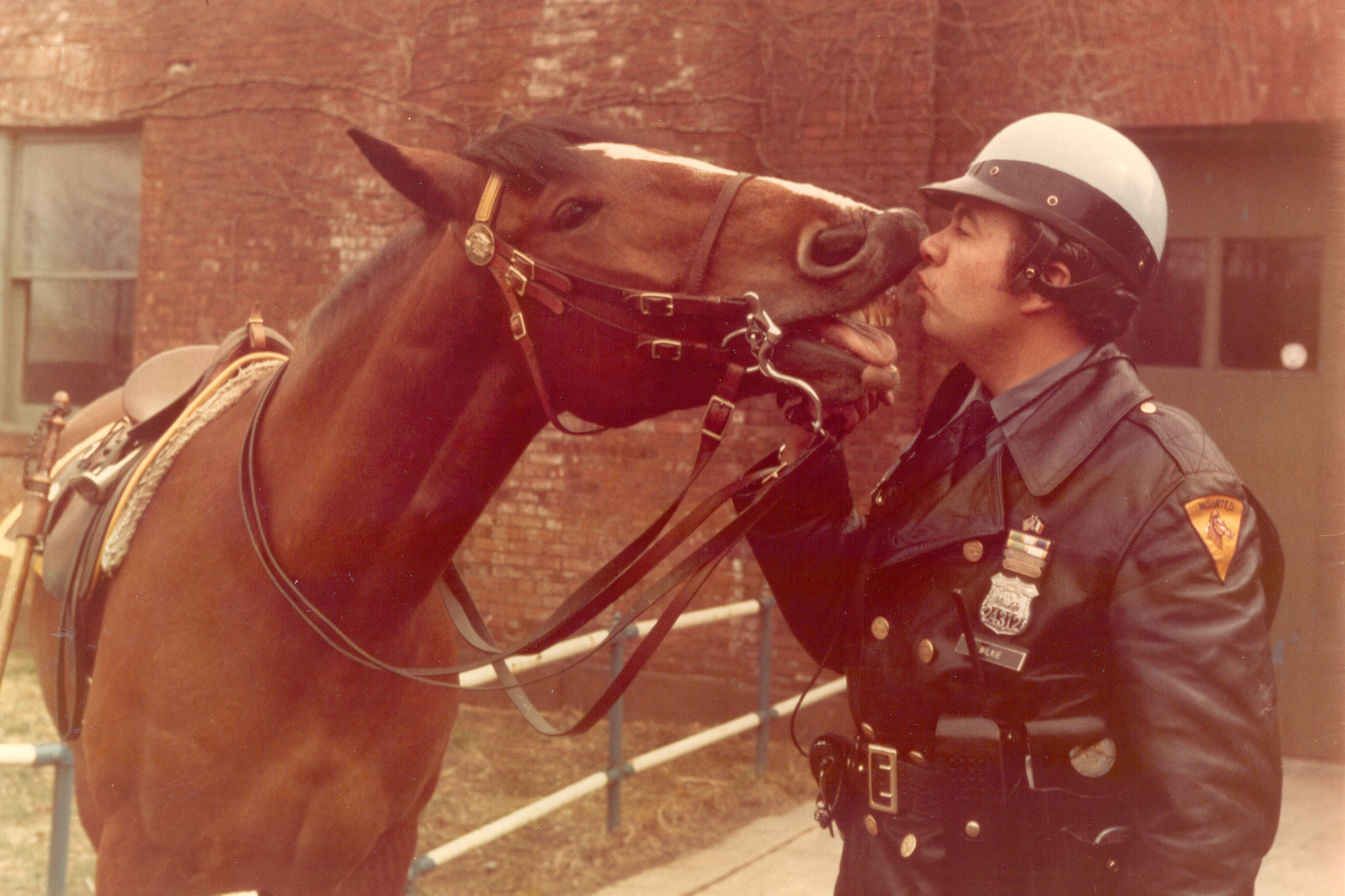 """""""10-Foot Cops: The NYPD's Mounted Unit"""""""
