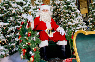 Santa's Winter Garden: Photos with Old St. Nick