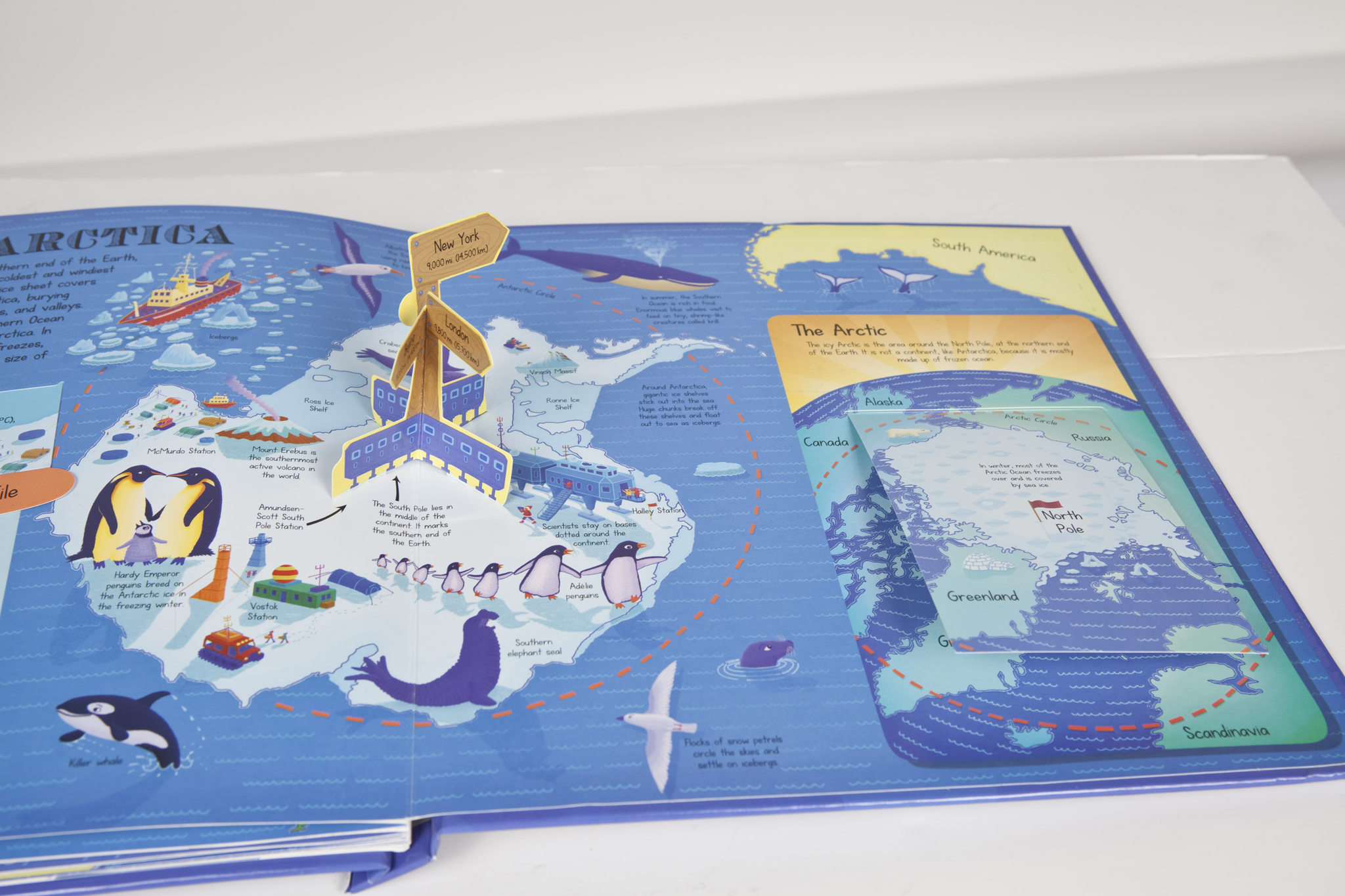 My Pop-Up World Atlas by Anita Ganeri and Stephen Waterhouse