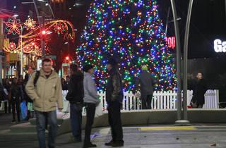 Downtown Brooklyn Holiday Tree