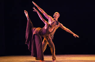 Ailey's Family Matinee Series