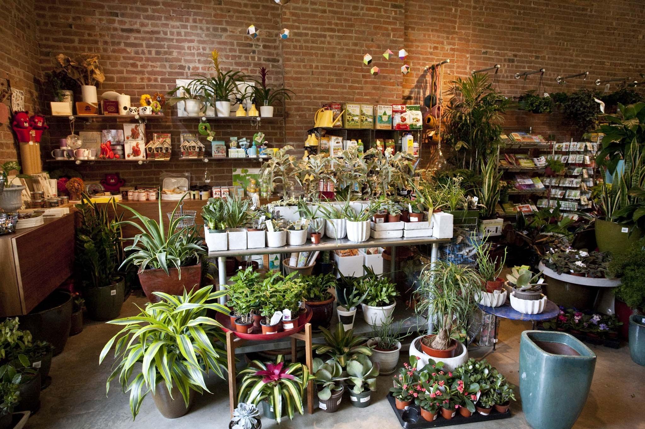 Букета, интернет магазин подарков и цветов для сад