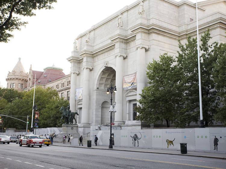 American Museum of Natural History's secrets