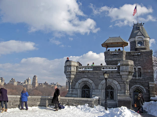 Central Park Conservancy Ice Festival