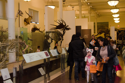 20th Annual Halloween Celebration at AMNH