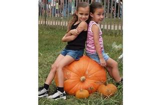 Queens Farm Pumpkin Picking