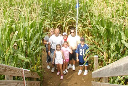 The Amazing Maize Maze