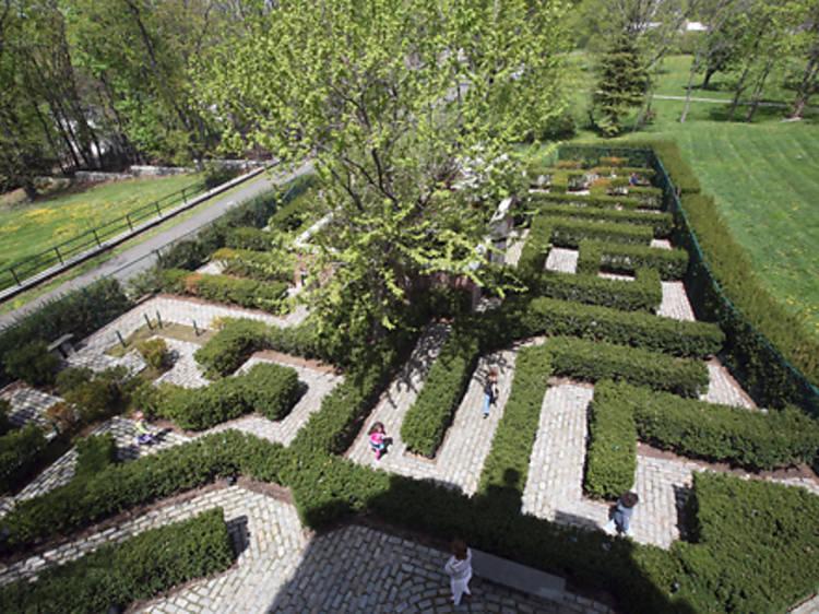 The Connie Gretz's Secret Garden