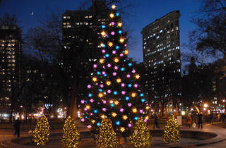 Madison Square Park Tree Lighting