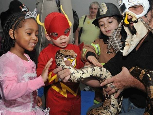 1/41 Monster Mash at the Brooklyn Childrenu0027s Museum  sc 1 st  Time Out & Best kid-friendly Halloween events in NYC: October 22 to 28