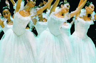 The Eglevsky Ballet's Nutcracker