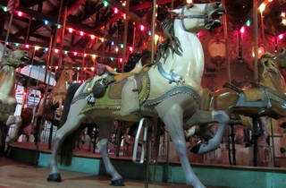 Forest Park new Carousel