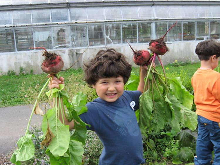 HSBC Children's Garden