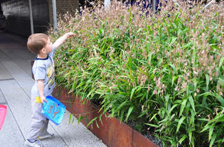 (Photograph: Friends of the High Line)
