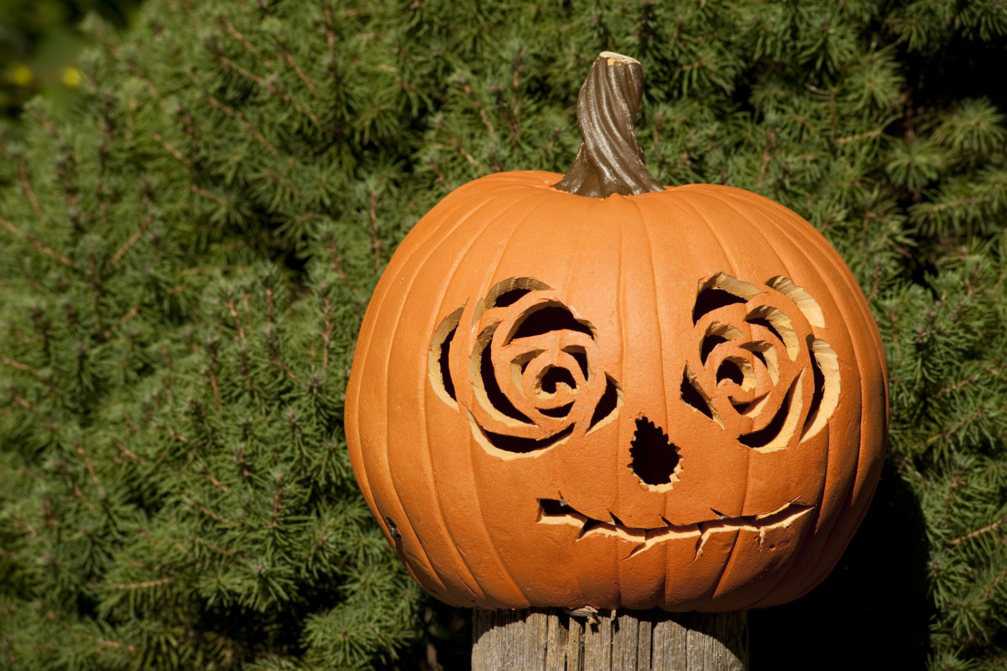 Best Halloween events for kids and families in NYC