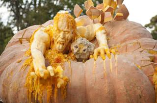 The Spooktacular Pumpkin Party