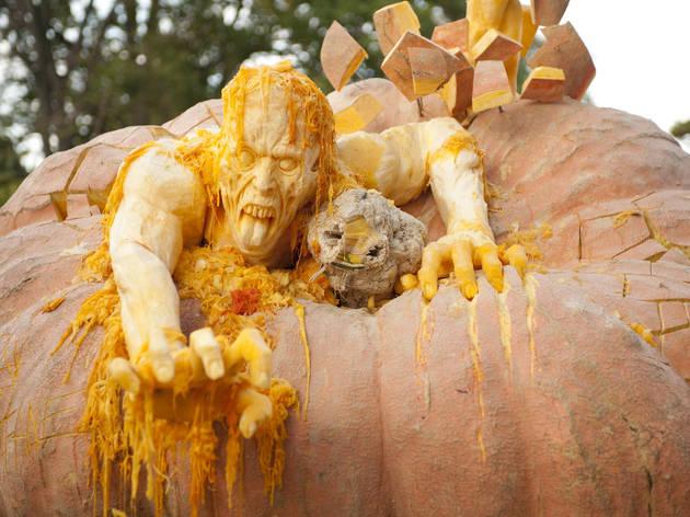 NYBG Haunted Pumpkin Garden