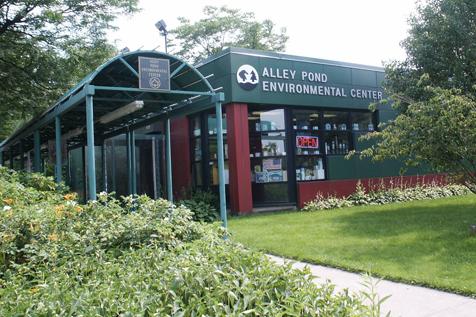 Alley ECOclub: Elemental Energy