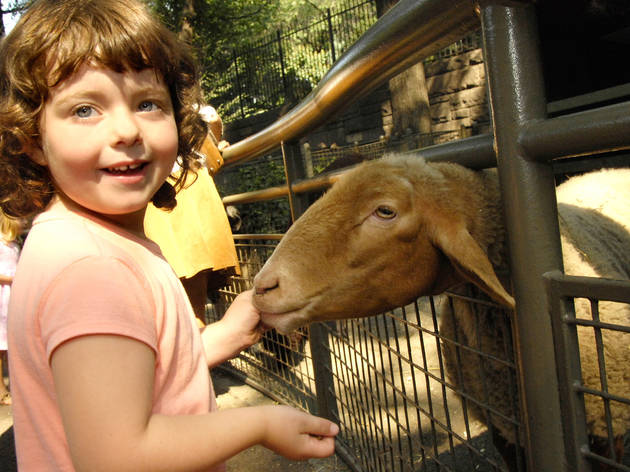 Tisch Children's Zoo at WCS's Central Park Zoo