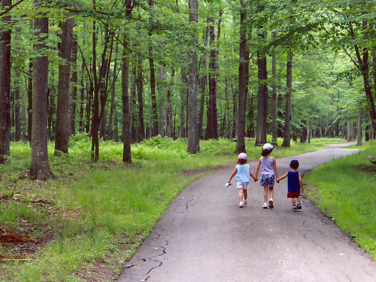 The best Poconos family resorts