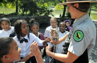 Raptor Fest at NYC Parks & Rec