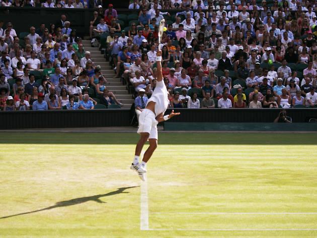 Wimbledon, Taylor Dent