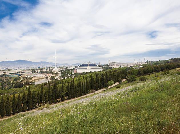Pícnic a Montjuïc