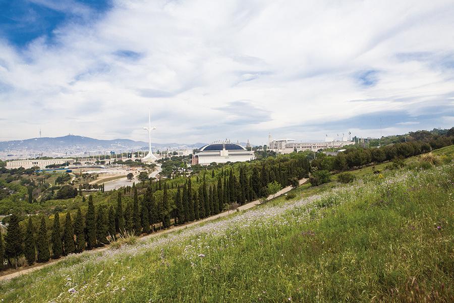 Montjuïc: guia definitiva per gaudir de la muntanya