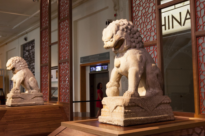 The Field Museum debuted a new permanent exhibition
