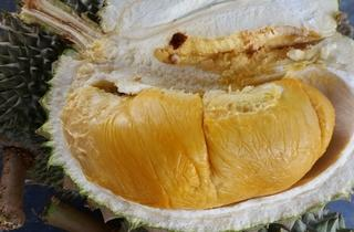 Free durian giveaway at Durian King