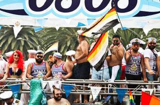 Osos marineros (Foto: Alejandra Carbajal)