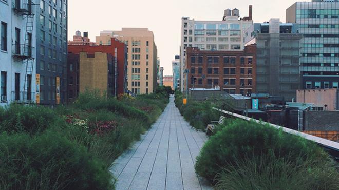Stroll through a public garden