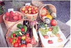 Lawrence Farm Orchards