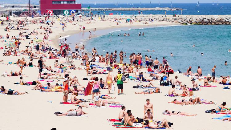 Turistas en la playa