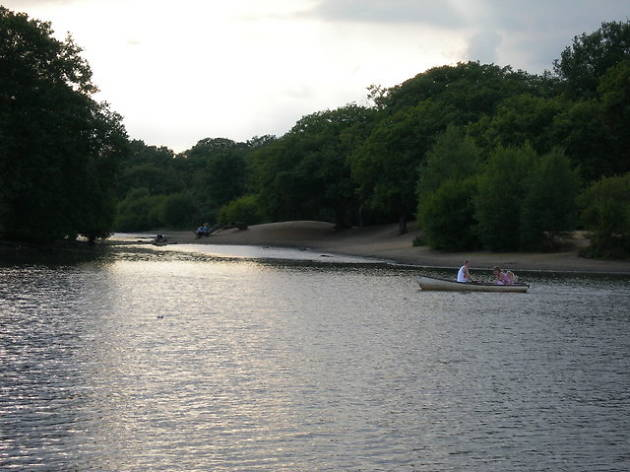 Hollow Pond, Epping Forest