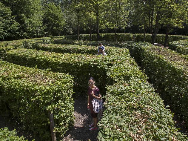 Crystal Palace Park Maze
