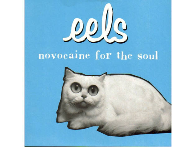 'Novocaine for the Soul' – Eels