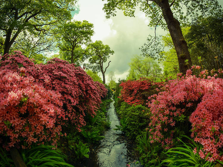 Amazing hidden gardens and green spaces in London