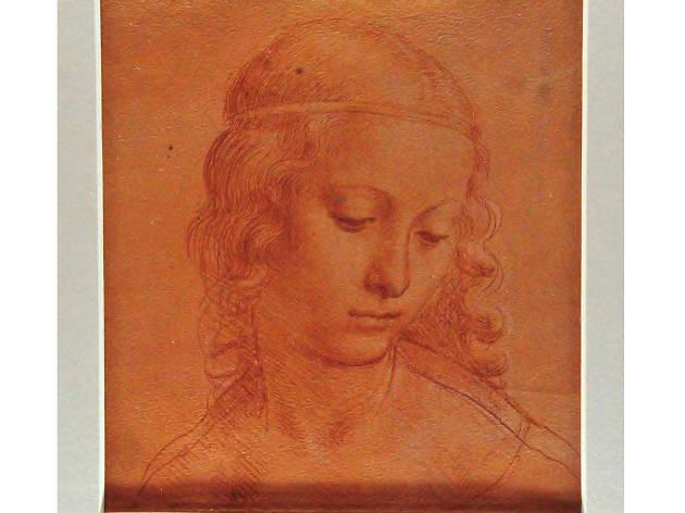 Leonardo Da Vinci en el DF