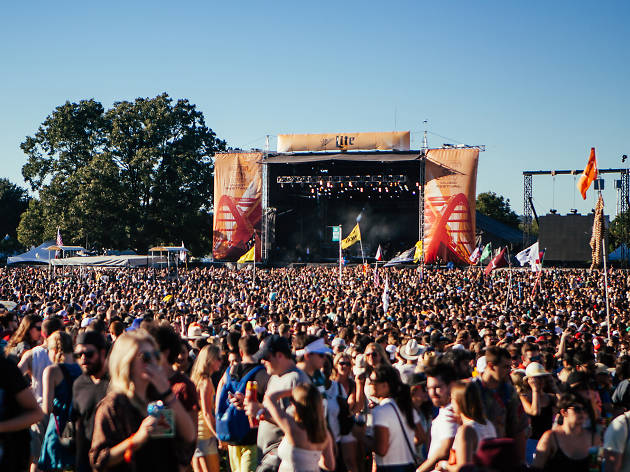 Attend a fall music festival