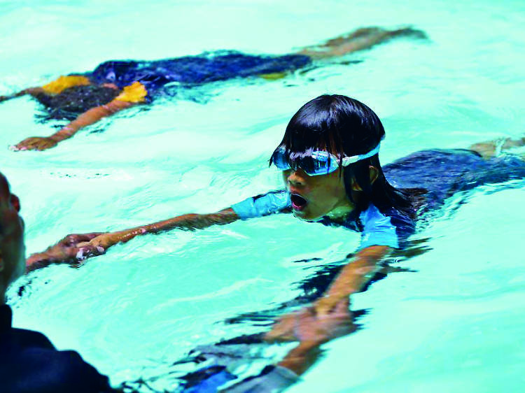 Learn to swim and dive at Sealantis