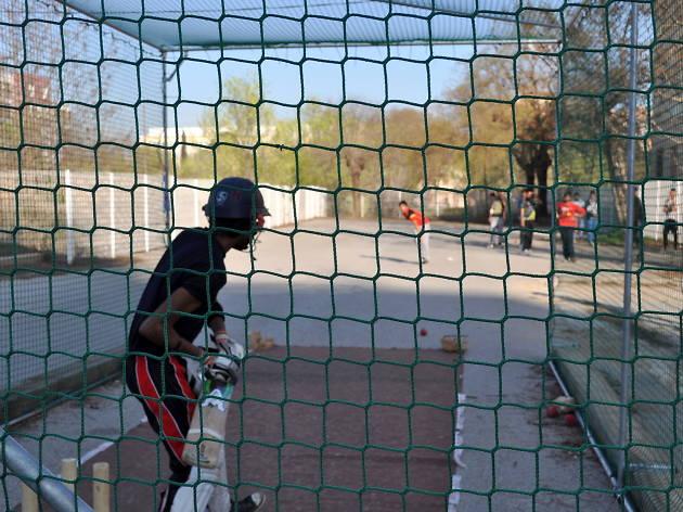 Cricket Sant Andreu