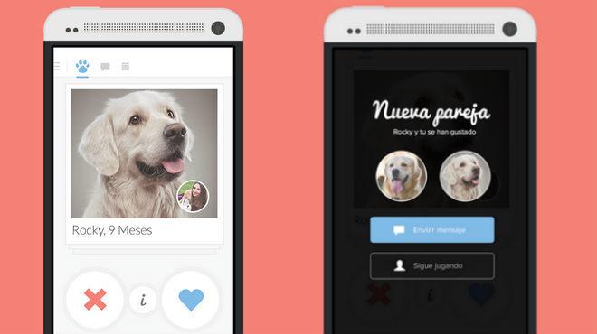 Twindog: el Tinder para perros