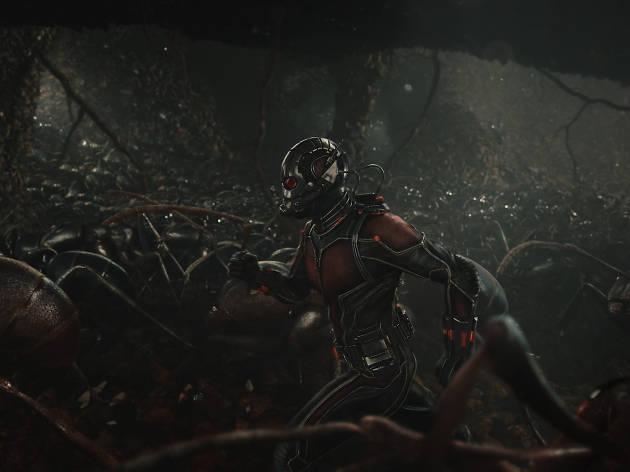 Marvel's Ant-Man starring Paul Rudd and Scott Lang