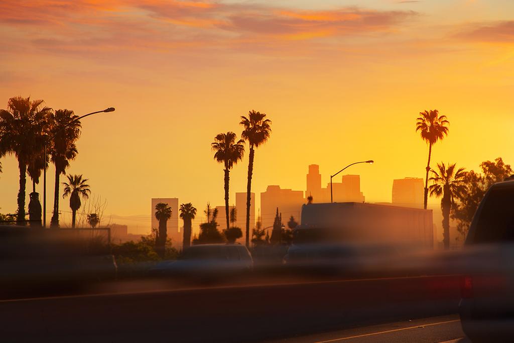 Los Angeles City Tour