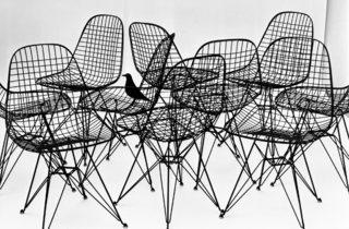 (Wire Chairs with bird, 1953. Photograph Charles Eames. © Eames Office LLC.)
