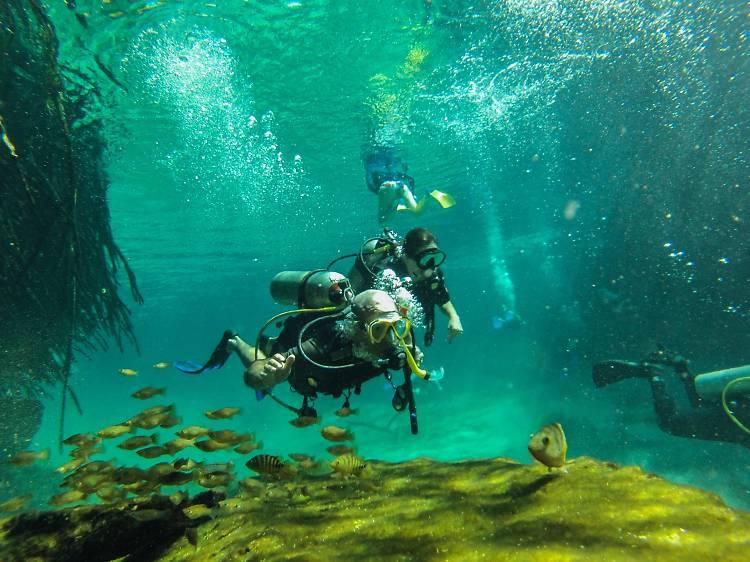 Explorer les fonds marins